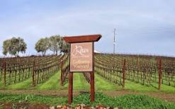 rocca-vineyard-sign