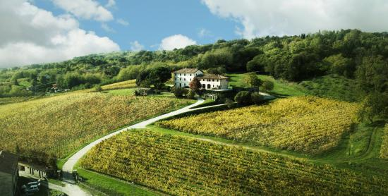 giusti-wine 2
